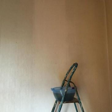 Carta da parati: dipingere o staccare?