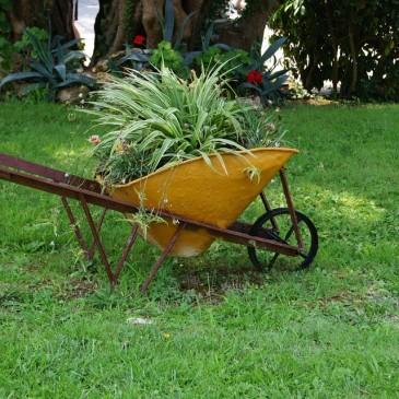 Idee per una vecchia carriola