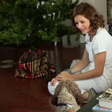 Albero di Natale ecologico: come coprire la base