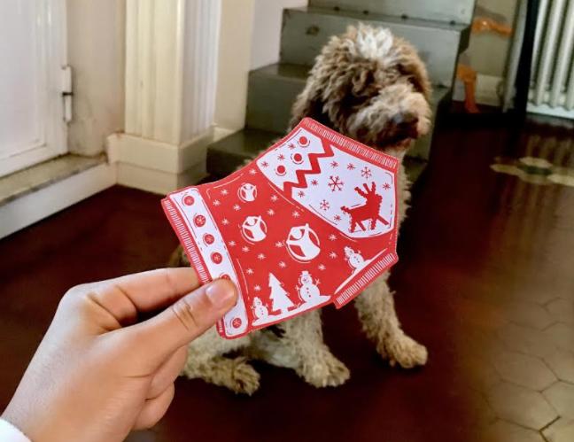 Il Cane Bieco e il Jumper di Natale
