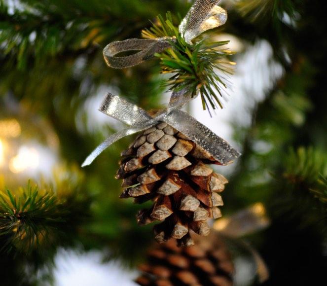 Ben noto Decorare un albero di Natale con le pigne | Come fare con Barbara VW99